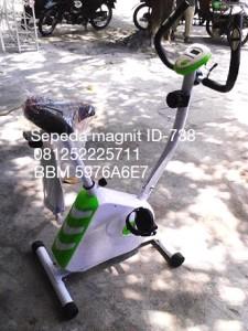 Sepeda olahraga magnit ID-738