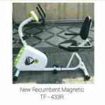Sepeda magnit Recumble commercial