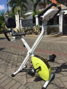 Sepeda magnetic X-bike fs-917